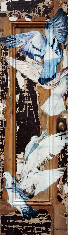 Rock Dove Door 6